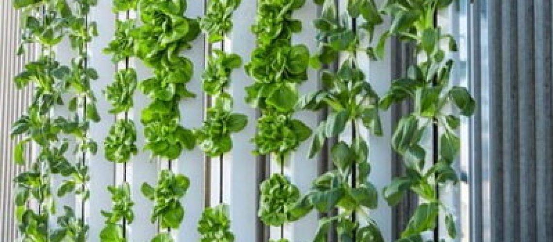 vertical-farm-916337_640